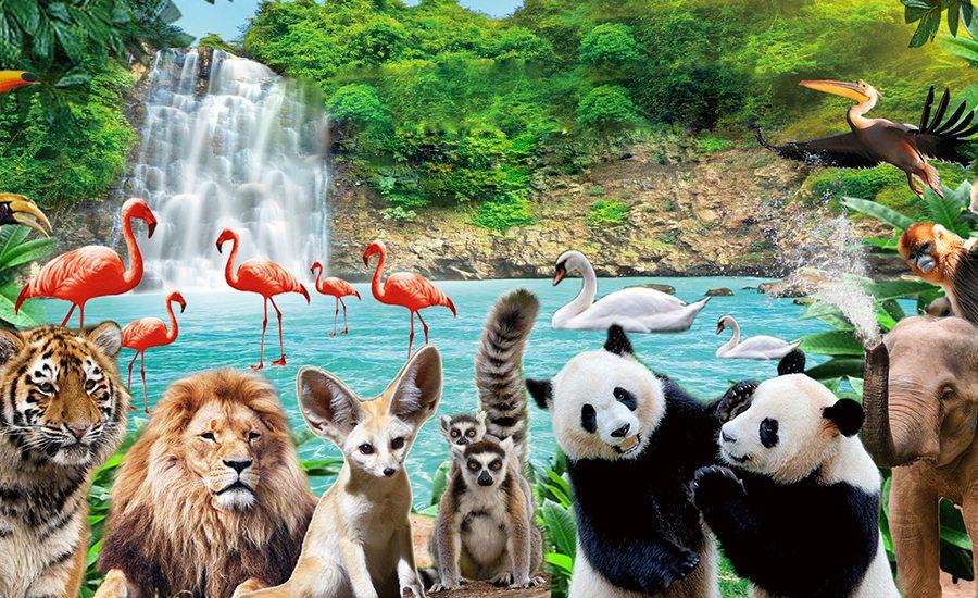 深圳野生动物园门票预订
